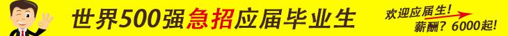 深圳市泽林信息咨询有限公司招聘信息