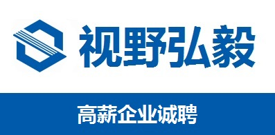 武汉视野弘毅教育科技有限公司