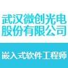 武汉微创光电股份有限公司