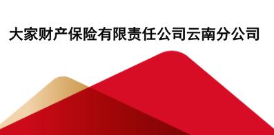 大家财产保险有限责任公司云南分公司