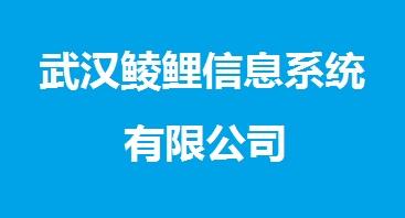 武汉鲮鲤信息系统有限公司