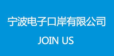 宁波电子口岸有限公司