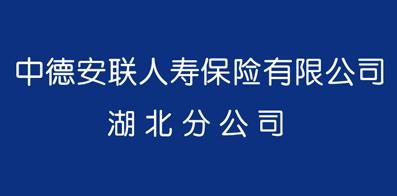 中德安联人寿保险有限公司湖北分公司