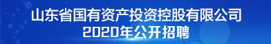山东省国有资产投资控股有限公司招聘信息