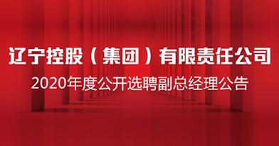 辽宁控股(集团)有限责任公司招聘信息