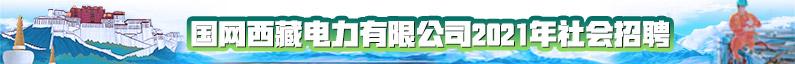 國網西藏電力有限公司招聘信息