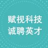 浙江赋视科技有限公司