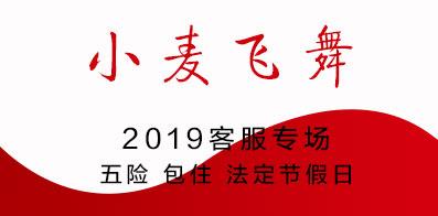 安徽省小麦飞舞科技有限公司