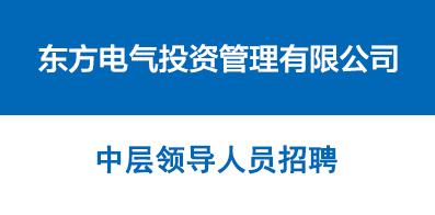 东方电气投资管理有限公司