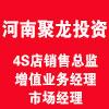 河南聚龙投资有限公司