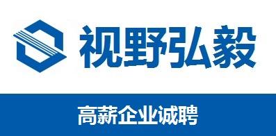 武汉视野弘毅教育科技有限