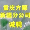 重慶方郡建設工程咨詢有限公司新疆分公司