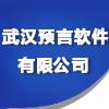 武汉预言软件有限公司