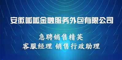 安徽呱呱金融服務外包有限公司