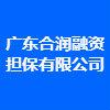 廣東合潤融資擔保有限公司