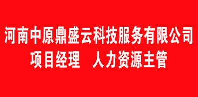 河南中原鼎盛云科技服務有限公司