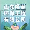 山東隆藍環保工程有限公司