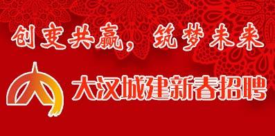 大汉城镇建设有限公司