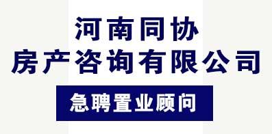 河南同协房产咨询有限公司