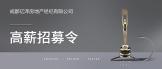 https://company.zhaopin.com/CZ194937810.htm
