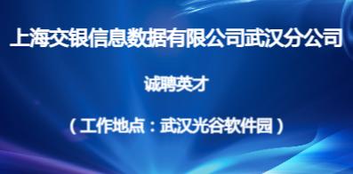 上海交银信息数据有限公司武汉分公司