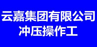 云嘉集团有限公司