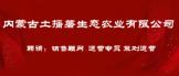 https://company.zhaopin.com/CC603642136.htm
