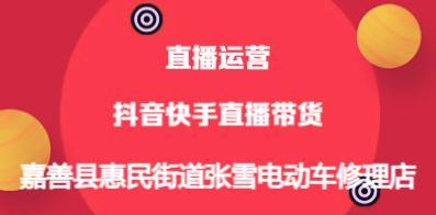 嘉善县惠民街道张雪电动车修理店