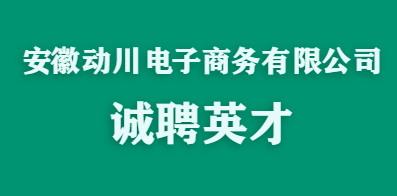 安徽动川电子商务有限公司