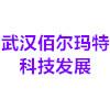 武汉佰马科技发展有限公司