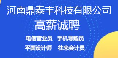 河南鼎泰丰科技有限公司