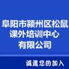 阜阳市颍州区松鼠课外培训中心有限公司